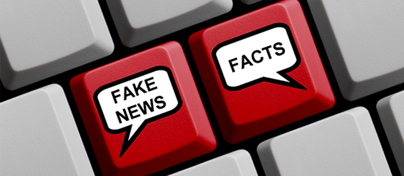 28 local groups express concern over draft fake news law