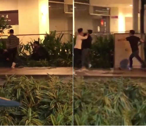 Viral Video Shows Young Men Fighting, Pushing Each Other into Bushes